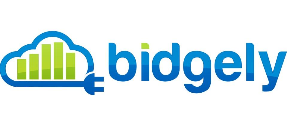 Bidgely